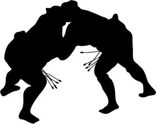 本日 の 相撲 の 結果